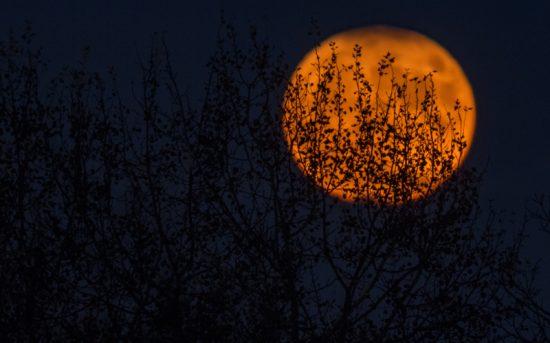 samhain, hecate